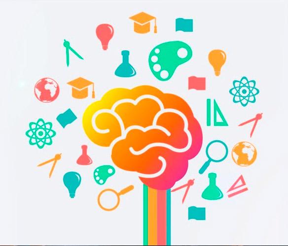 Neurociências e Aprendizagem